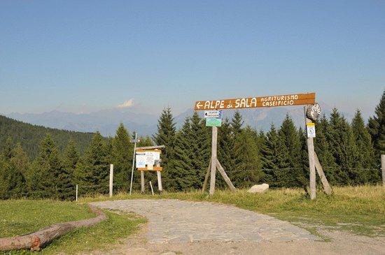 Agriturismo Alpe di Sala: Het bergweggetje dat naar Alpe di Sala leidt