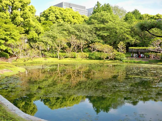 The East Gardens of the Imperial Palace (Edo Castle Ruin): So lovely