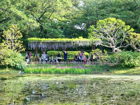The East Gardens of the Imperial Palace (Edo Castle Ruin): Gorgeous