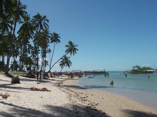 Pontal De Ocapora: praia