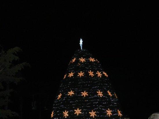 Jekyll Island Club Resort: Tree lighting on main grounds