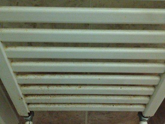 Hotel Giglio: Rust/dirt on towel warmer in en-suite bathroom