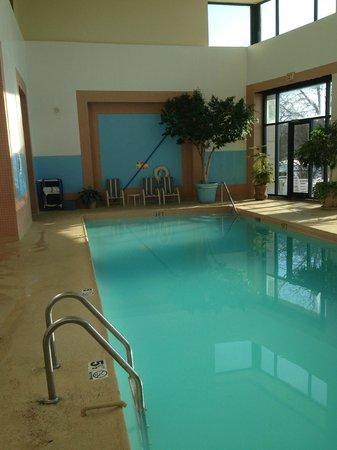 Wyndham Glenview Suites Chicago North: Pool