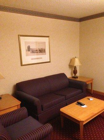 Wyndham Glenview Suites Chicago North: Sitting area