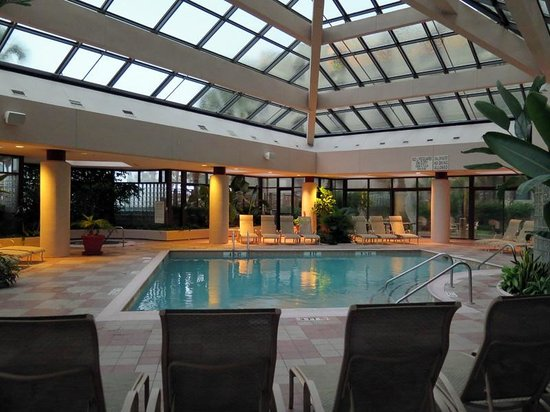 Hilton Head Marriott Resort & Spa : Indoor pool