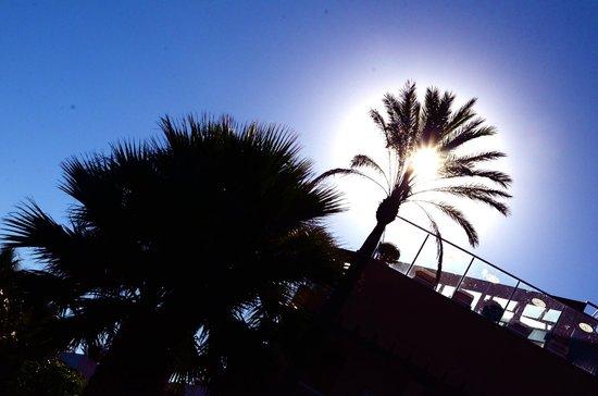 Gran Hotel Elba Estepona & Thalasso Spa: .