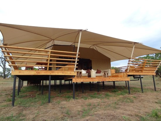 Serengeti Bushtops Camp: The Oribi Tent