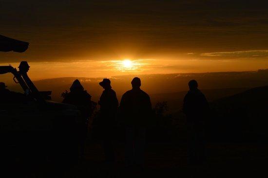 Mara Bushtops : Honeymoon Bushtop breakfast