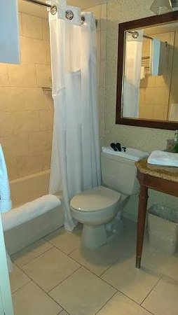 Holiday Inn Express Lynbrook : Suite Bathroom