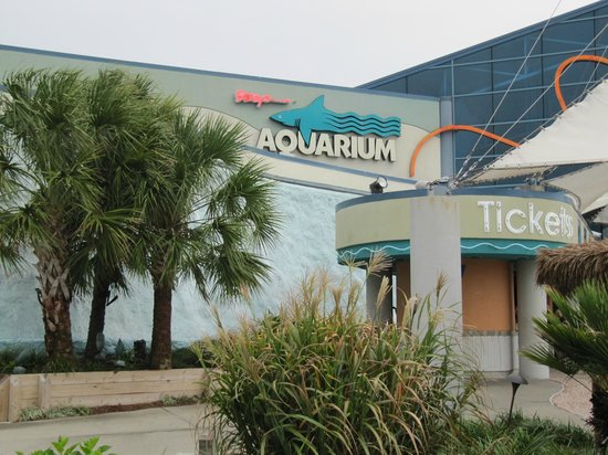 Grand Atlantic Ocean Resort: The Aquarium at Broadway at the Beach