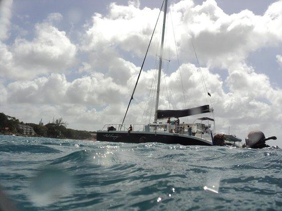 Cool Runnings Catamaran Cruises: Catamaran from the water