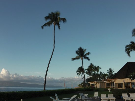 Royal Lahaina Resort: View from the pool