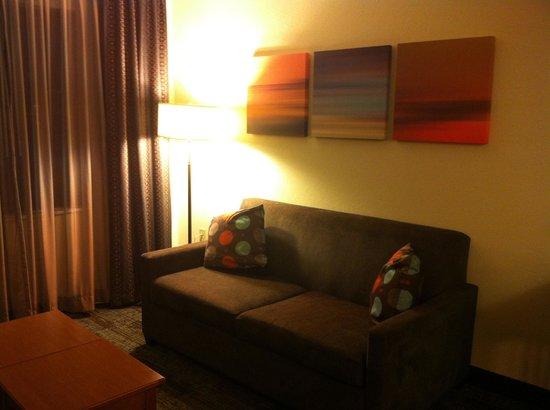 Staybridge Suites Jackson : Sleeper sofa