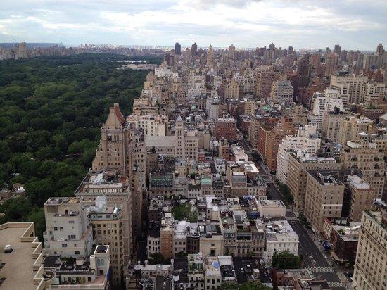 The Pierre, A Taj Hotel, New York: Hermosa vista