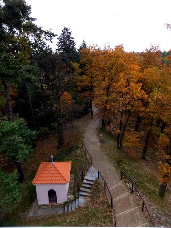 Pruhonice Park: From the viewing tower