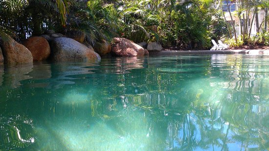 Melaleuca Resort: Tropical pool & gardens
