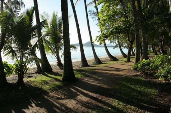 Melaleuca Resort: Beach front location