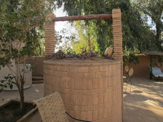 Auberge  Derkaoua: pretty well on the grounds