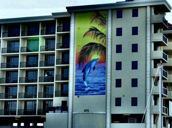 Pier House 60 Marina Hotel: Marina side of hotel