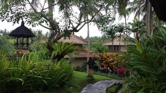 Villa Semana : Gorgeous villas
