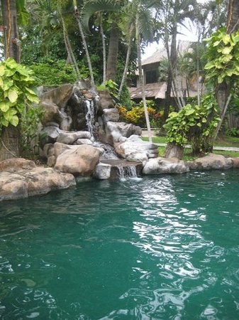 Coral View Villas : pool