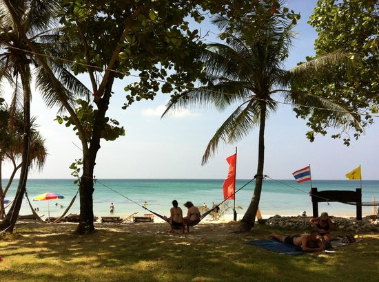 Klong Khong Beach Resort : Hammocks on grounds