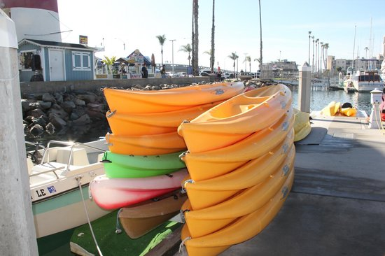 WorldMark Oceanside Harbor: Kayaking rental in the Harbor area