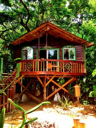 Cinco Continentes Rooms & Apartments : Tree-house