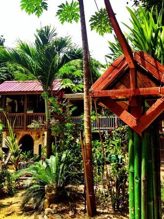Cinco Continentes Rooms & Apartments : garden