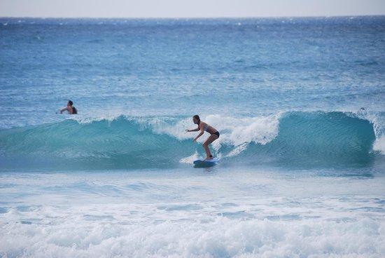 Burkie Surf School : Burkie's Surf School