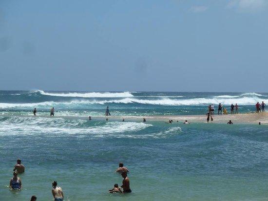 Poipu Beach Park: Surf's up. Poipu beach