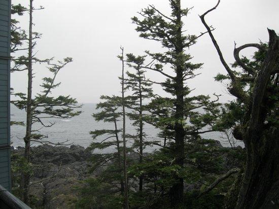 Black Rock Oceanfront Resort: View from Deck - Room 317