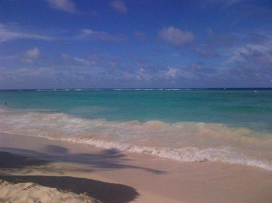 Majestic Elegance Punta Cana: The gorgeous beach!