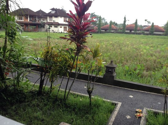 Puji Bungalow: The view