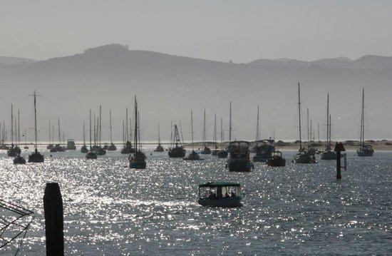 Sea Air Inn Morro Bay: nearby bay