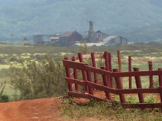 CJM Country Stables: View of old sugar cane factory from CJM stables. The best ranch on Kauai!!!