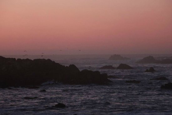 Monterey Oceanside Inn : close to 17 Mile Drive