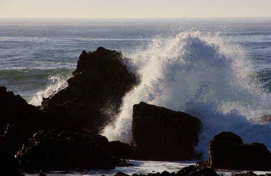 Monterey Oceanside Inn: Near the shore