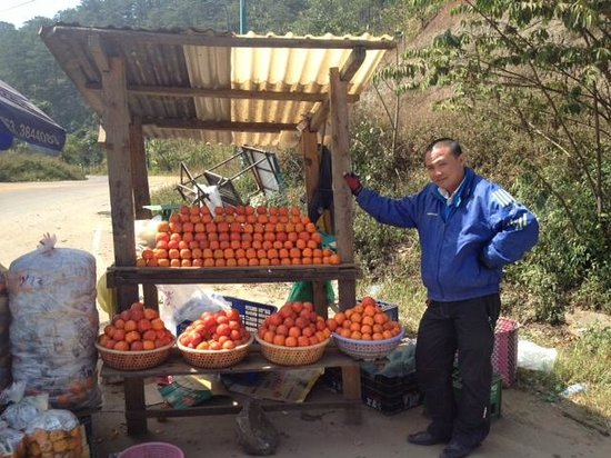 Dalat Angels: One of our stops - Khaki introduction and tasting