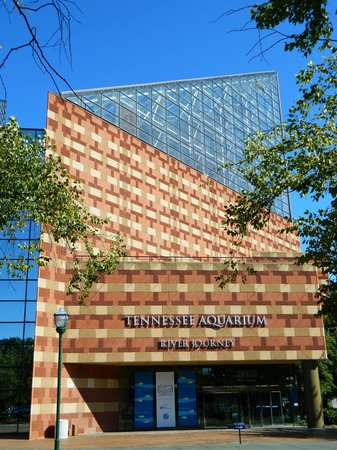 Tennessee Aquarium: Entrance