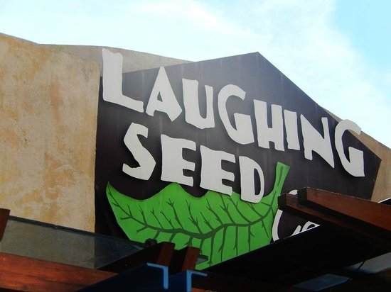 Laughing Seed Cafe: The sign out front