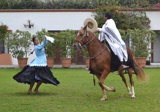 Los Ficus Casa Hacienda: Marinera - Traditional Peruvian dance with a Chalan mounted on a Peruvian Paso