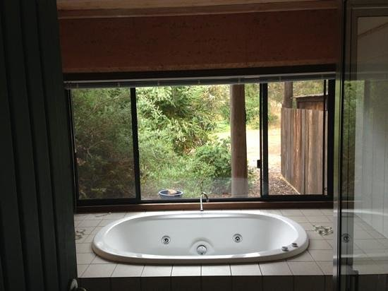 Burnside Organic Farm: large spa bath with private aspect