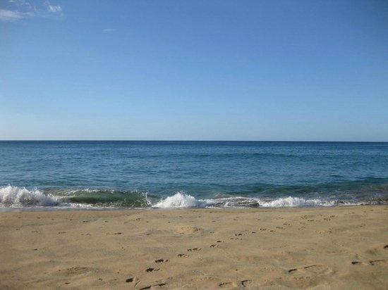 Coco Hotel: the blue sea