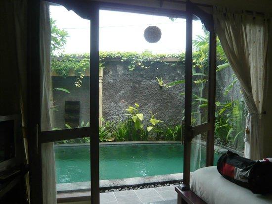 Bali Ayu Hotel: Pool Villa