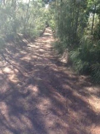Mokuleia, HI: 4WD trail
