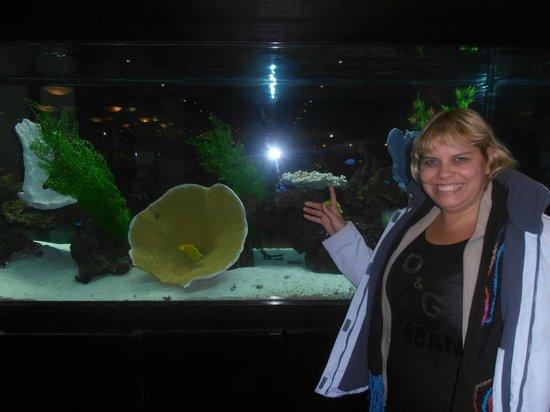 Minado: yo con los peces