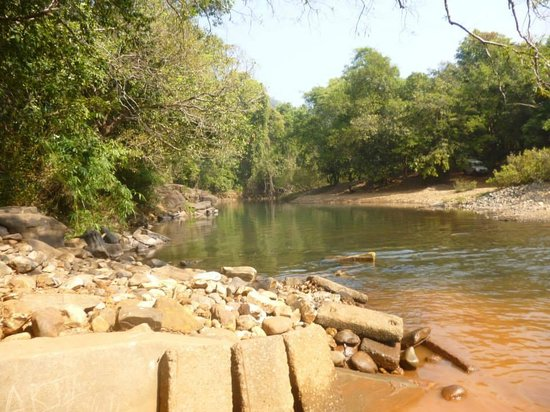 Fernandes Wooden Cottages : The waterfalls
