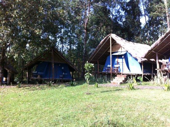 Eco-Omo Lodge: Rooms