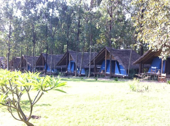 Eco-Omo Lodge: Rooms and View
